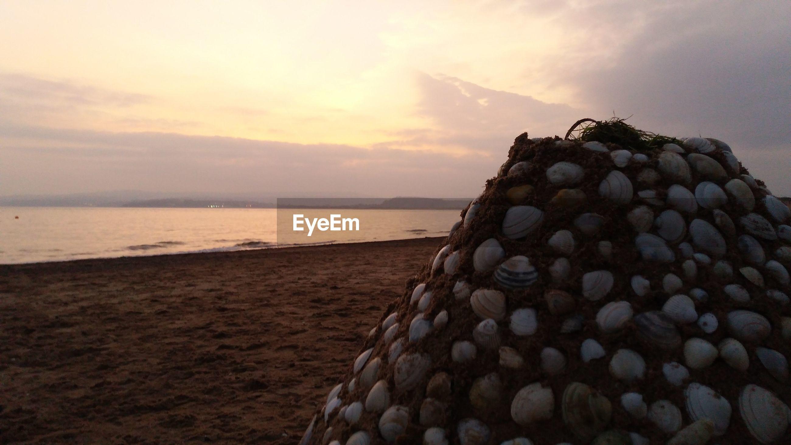 CLOSE-UP OF SEA SHORE AT SUNSET