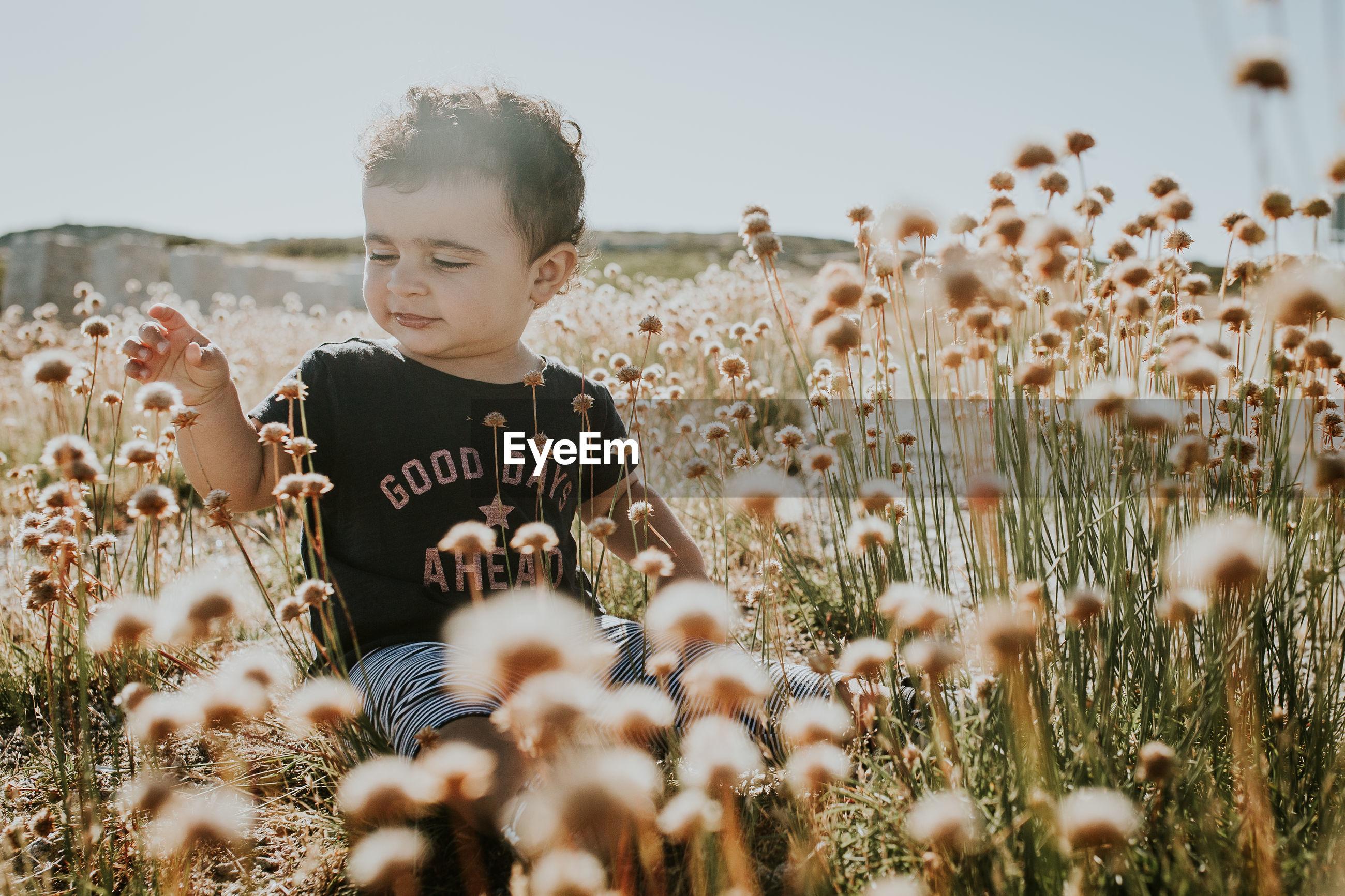 Cute girl sitting amidst flowers against sky