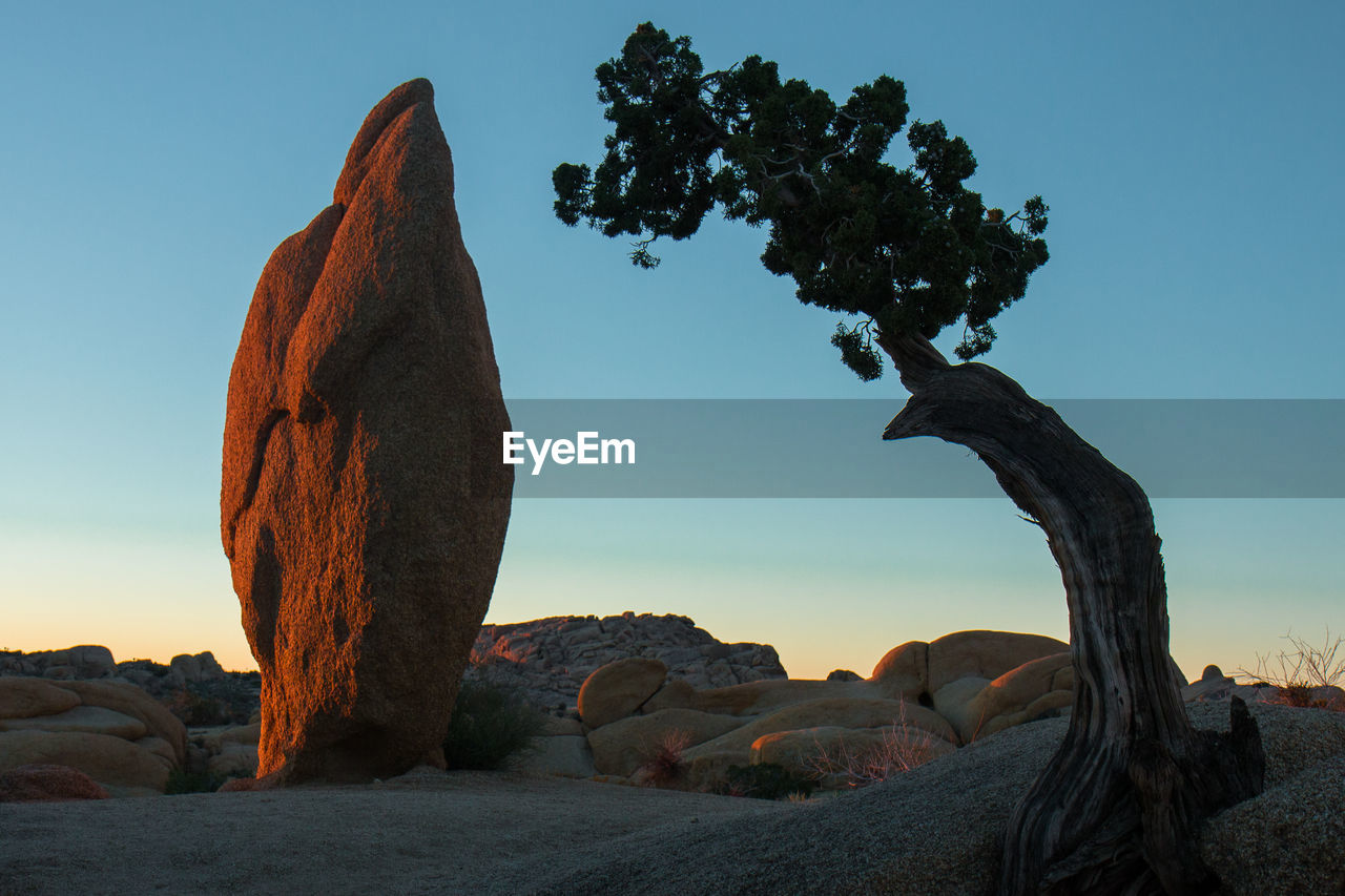 Rock Formation And Tree Against Sky