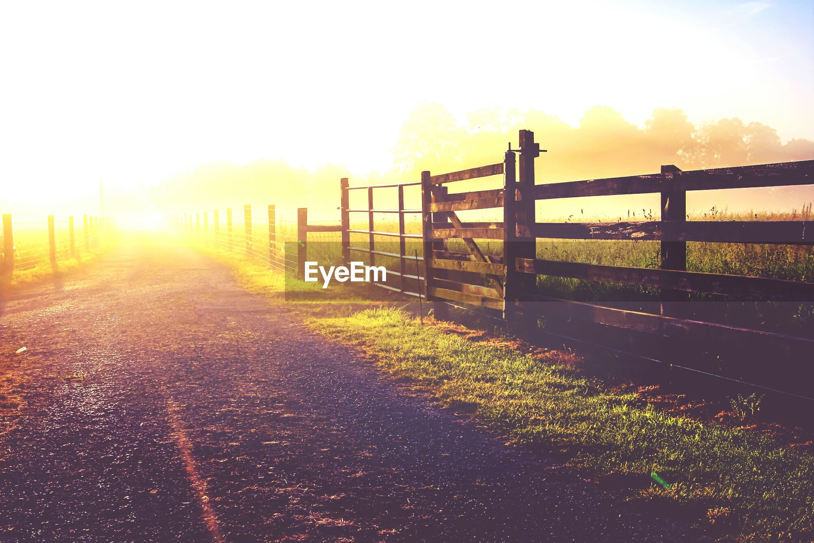 sunset, sun, sunlight, fence, sky, sunbeam, tranquil scene, tranquility, silhouette, nature, lens flare, scenics, railing, the way forward, field, landscape, beauty in nature, safety, protection