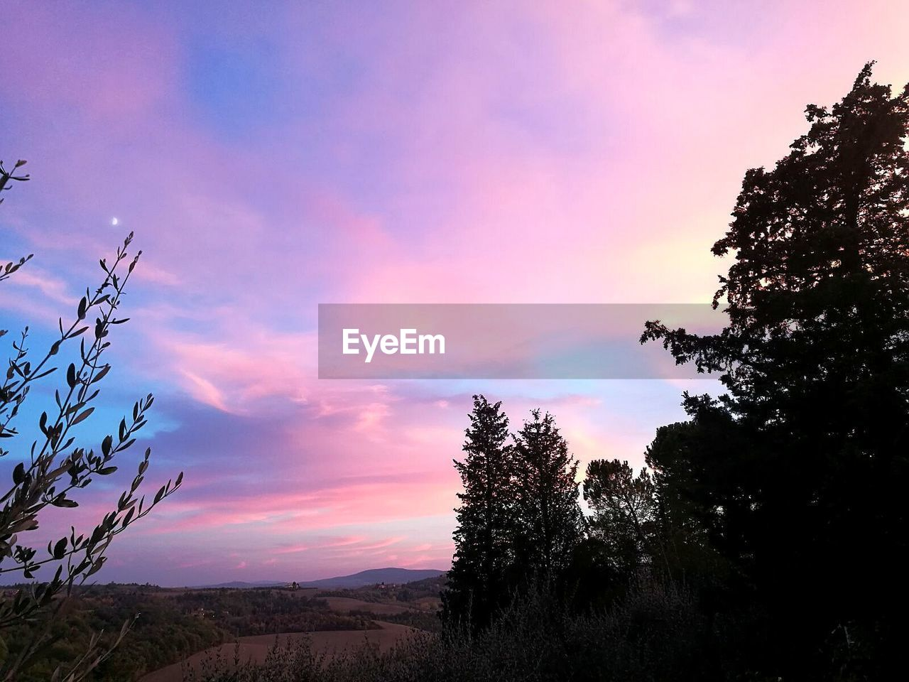 sunset, tree, beauty in nature, nature, sky, scenics, tranquility, tranquil scene, no people, silhouette, outdoors, growth, landscape, day