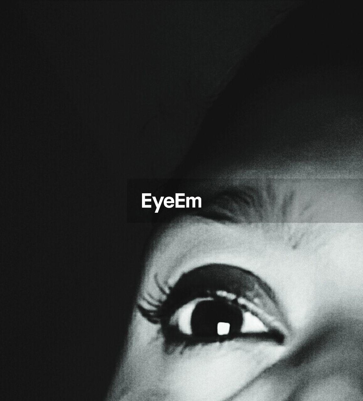 human eye, one person, real people, human body part, eyelash, close-up, looking at camera, indoors, eyeball, young women, eyebrow, eyesight, sensory perception, young adult, portrait, iris - eye, black background, day, people