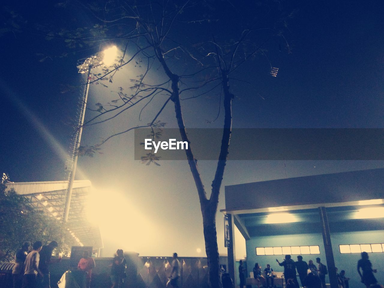 large group of people, women, men, crowd, real people, lifestyles, illuminated, outdoors, night, sky, tree, people, adult