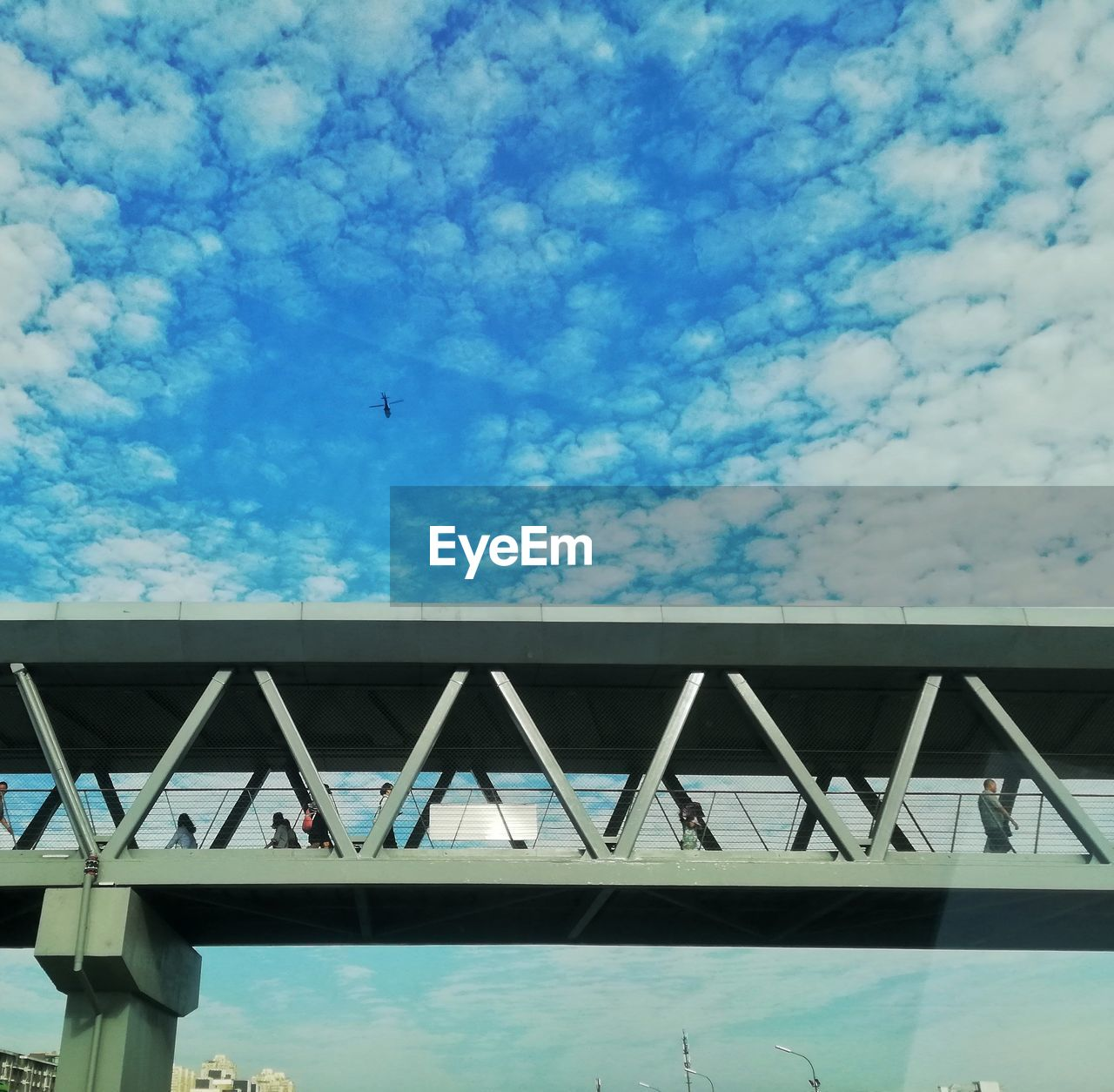 built structure, architecture, sky, cloud - sky, building exterior, bird, bridge, nature, day, low angle view, vertebrate, no people, animal themes, transportation, blue, bridge - man made structure, animal, outdoors, connection, animals in the wild