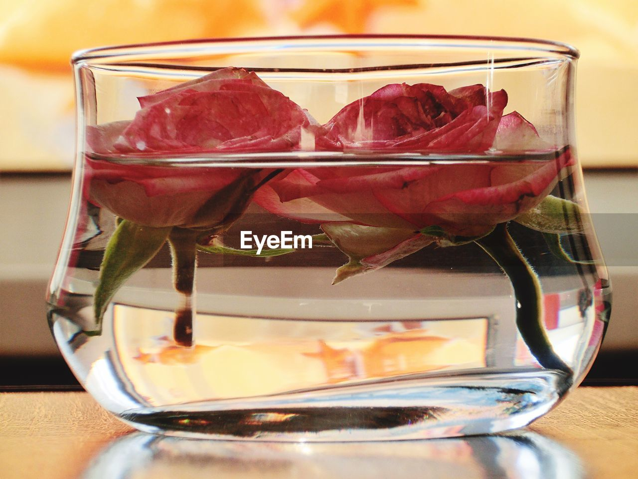 Close-Up Of Roses In Bowl