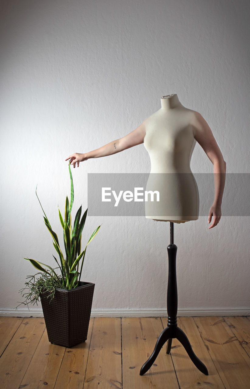 indoors, wall - building feature, mannequin, human representation, potted plant, representation, home interior, plant, no people, flooring, still life, creativity, art and craft, growth, white color, wall, fashion, standing, flower pot