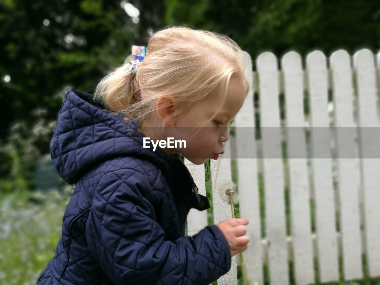 Side View Of Young Girl Blowing Dandelion