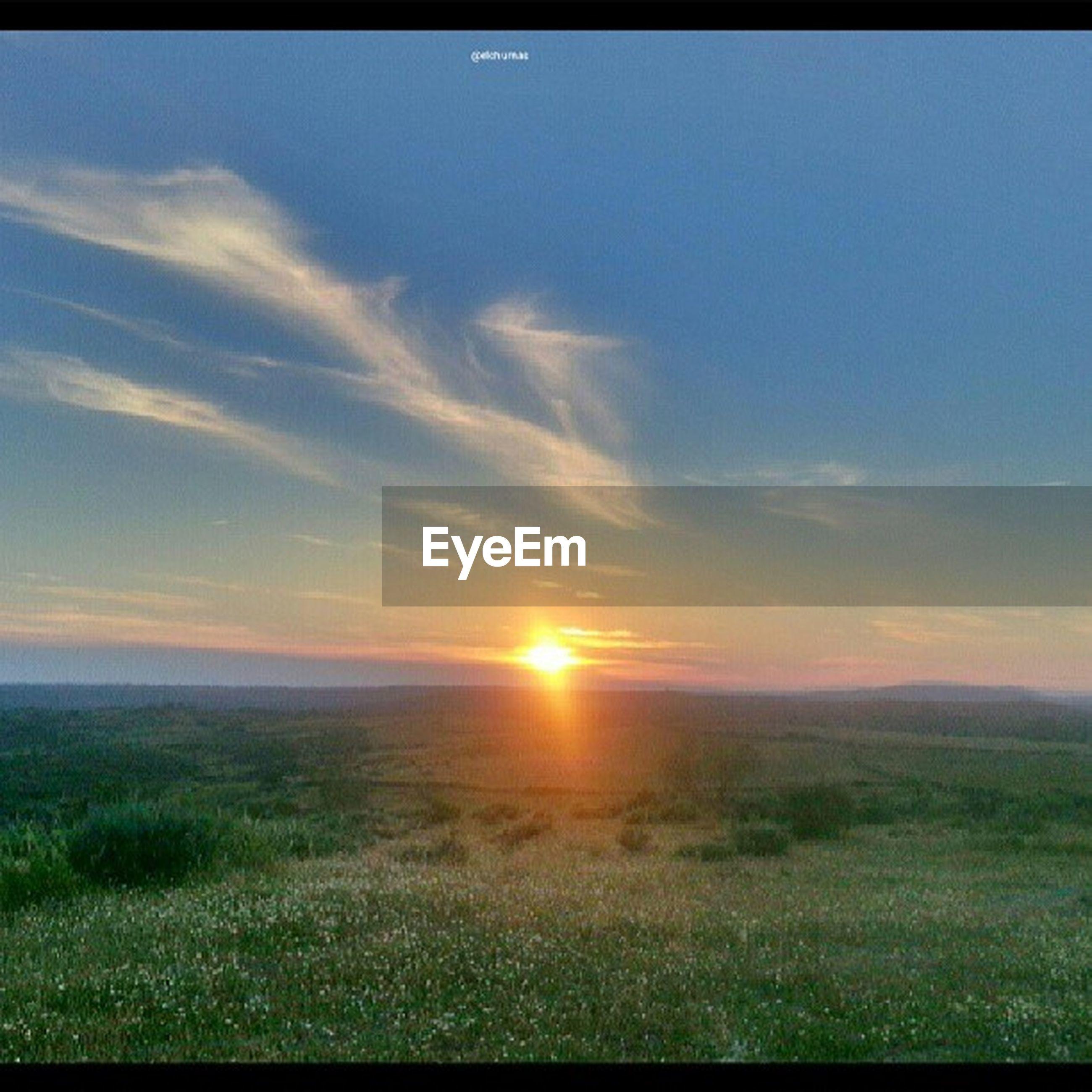 sun, sunset, tranquil scene, scenics, tranquility, beauty in nature, sky, landscape, grass, sunlight, nature, field, sunbeam, idyllic, lens flare, orange color, horizon over land, cloud - sky, grassy, non-urban scene