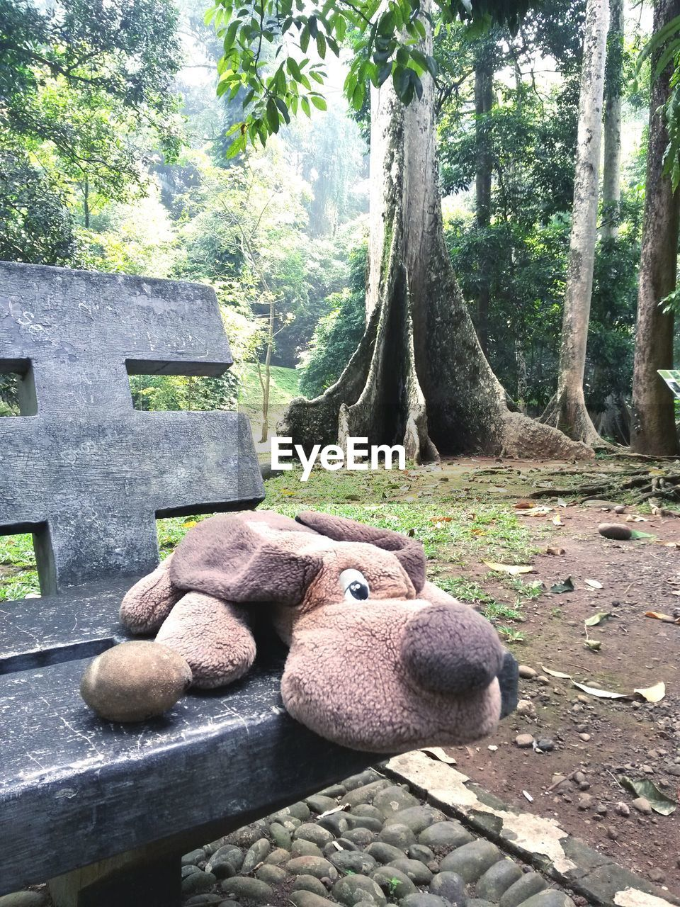 Stuffed Toy On Bench In Park