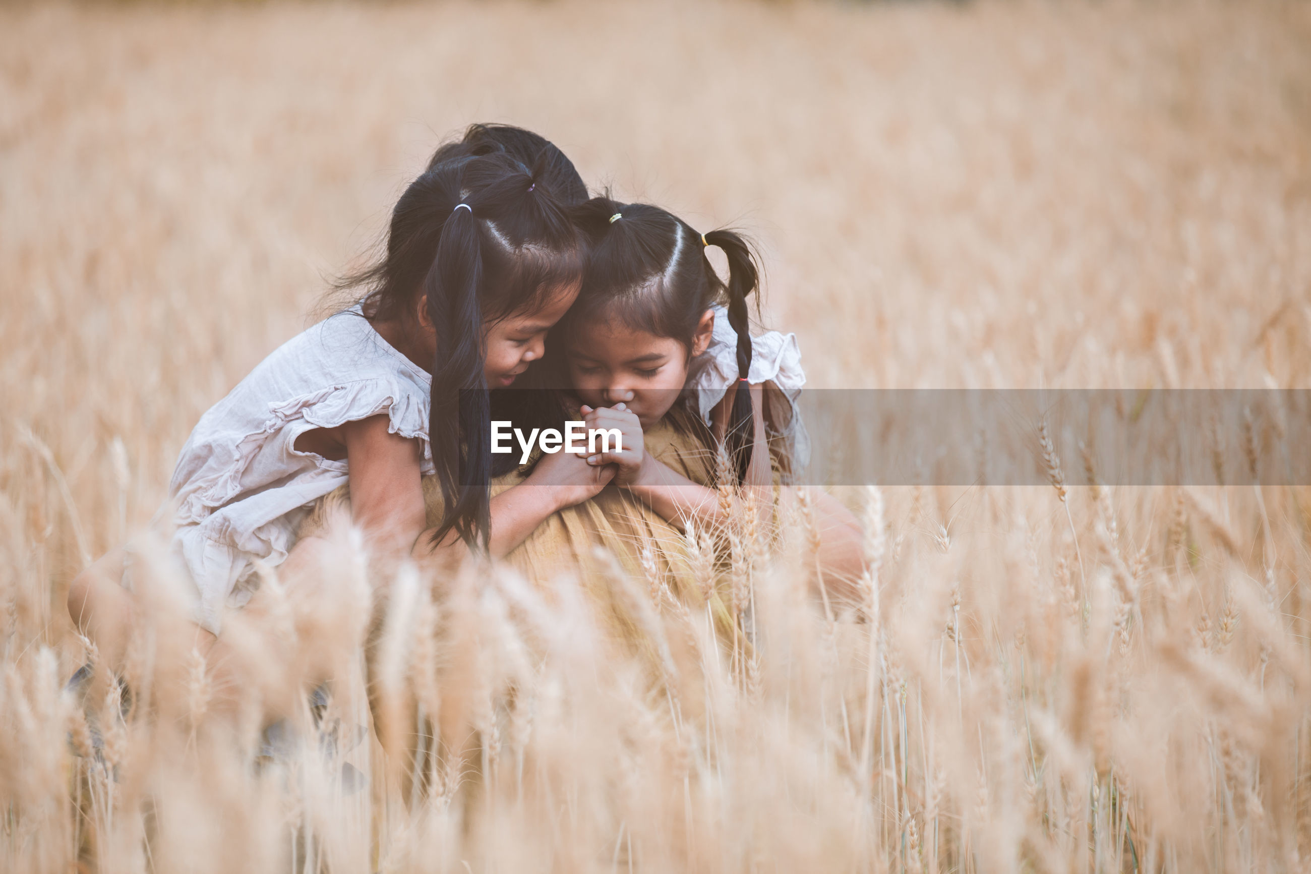Twins embracing mother in wheat field