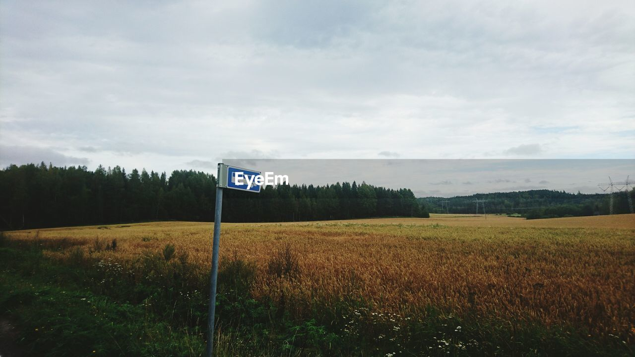 View Of Bus Stop Sign By Field
