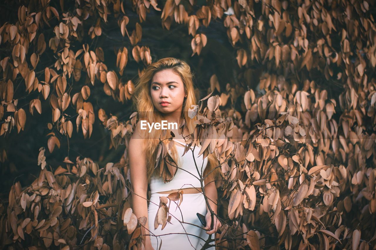 Young asian fashion model standing by autumn tree