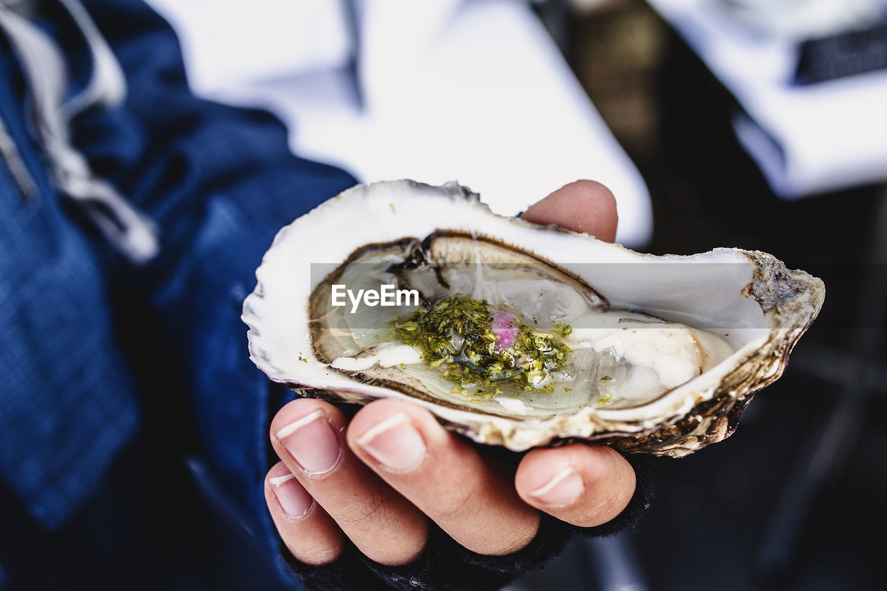 Close-up of hand holding mussel