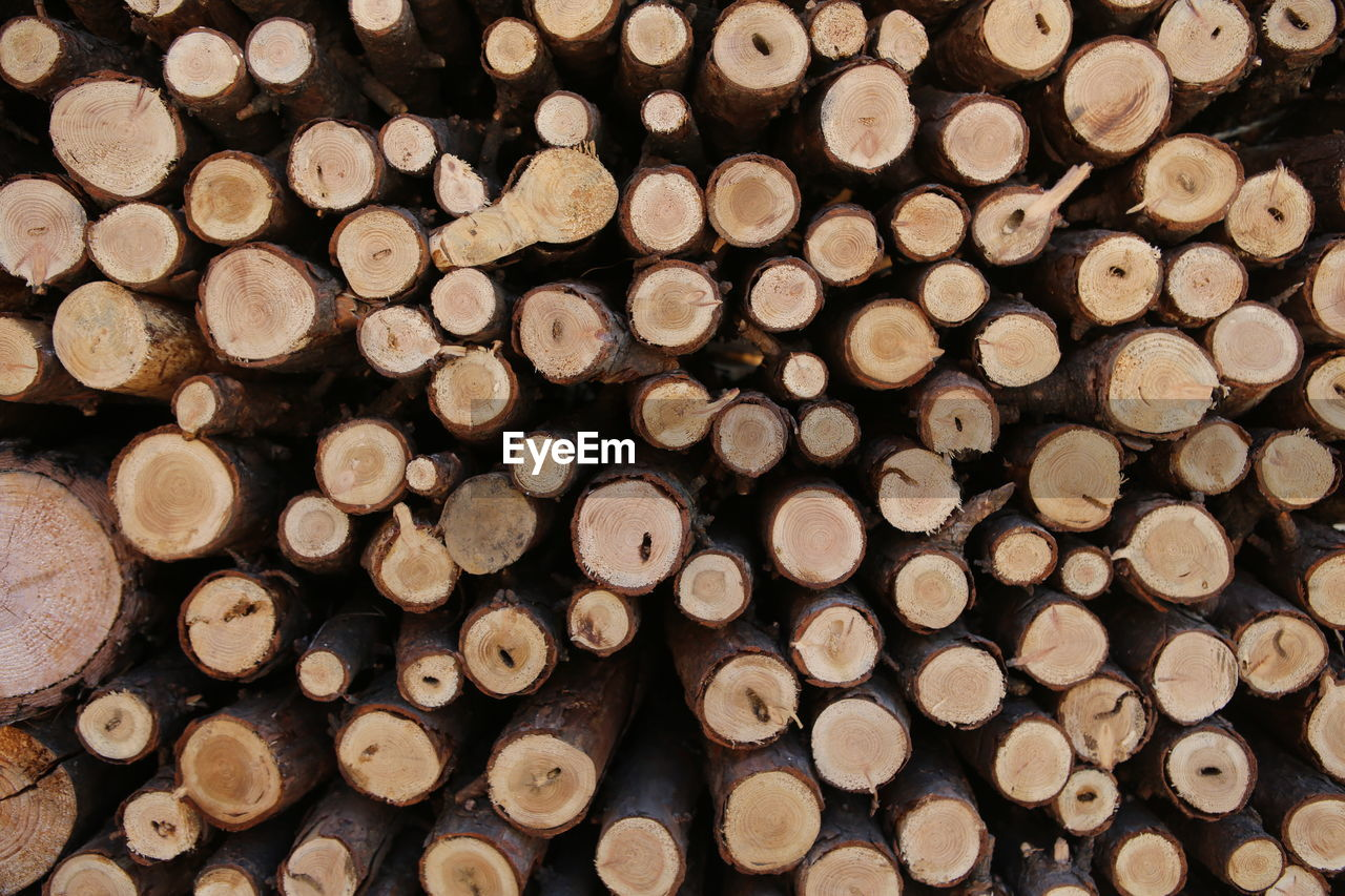 log, large group of objects, lumber industry, full frame, timber, firewood, backgrounds, wood, stack, wood - material, forest, deforestation, abundance, tree, no people, shape, circle, environmental issues, geometric shape, heap, woodpile