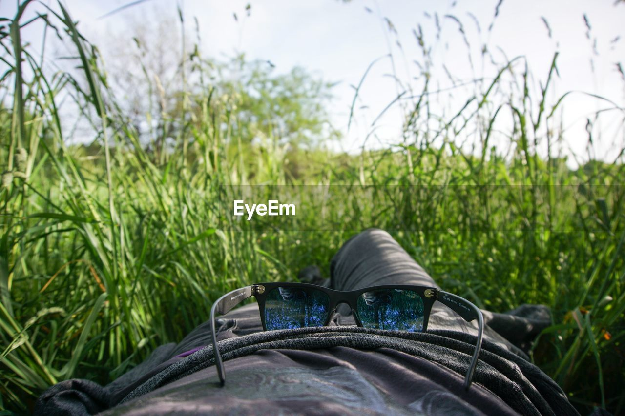 Midsection Of Person With Sunglass Lying Down On Grassy Field