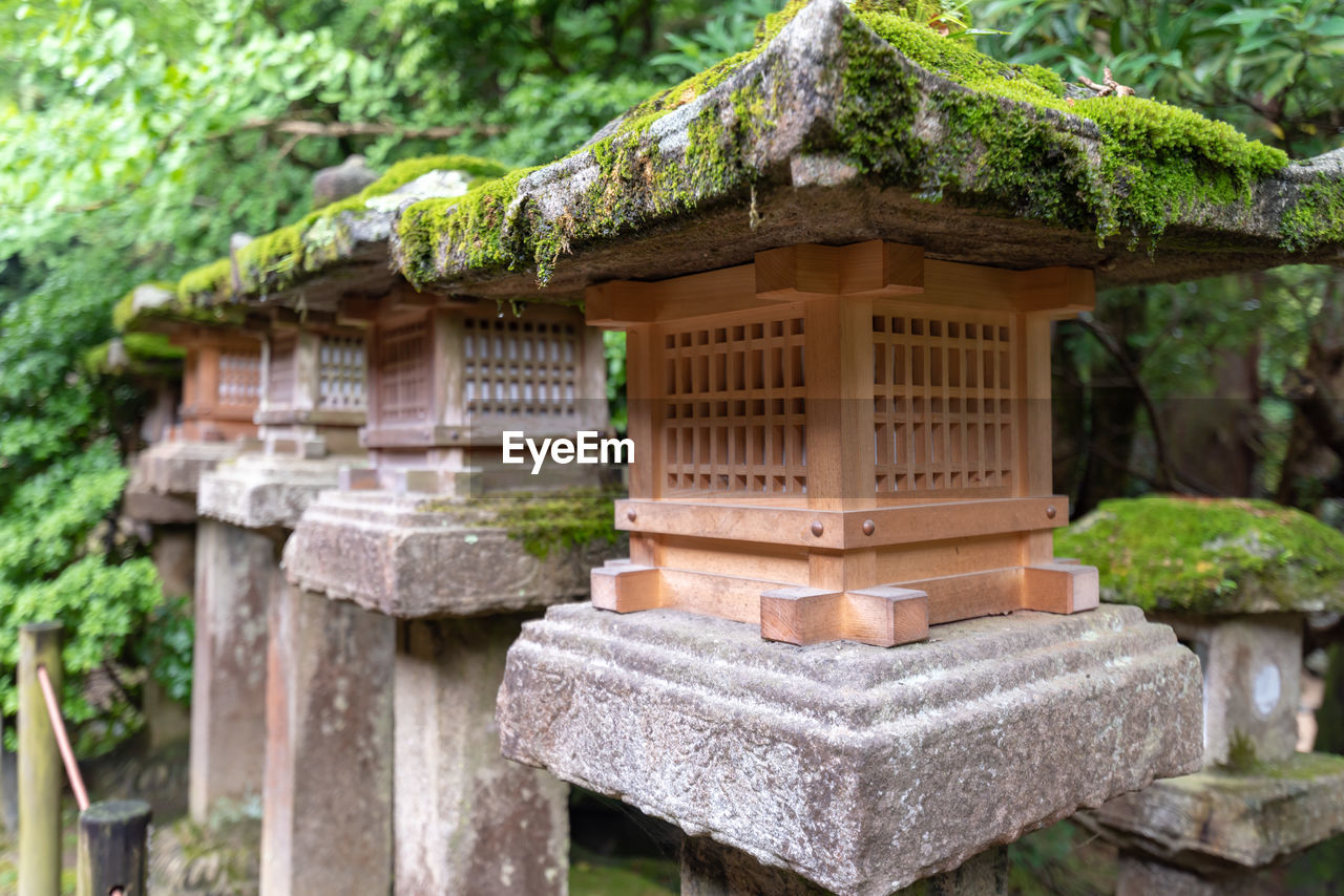 architecture, tree, focus on foreground, day, built structure, no people, religion, nature, formal garden, spirituality, plant, outdoors, roof, japanese garden, building exterior, building, belief, place of worship, shrine, ornamental garden