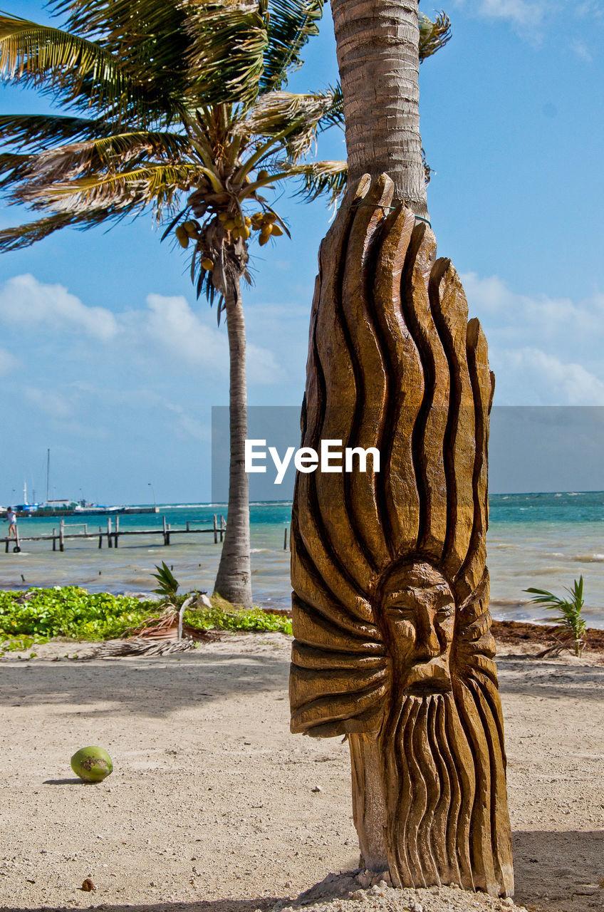 COCONUT PALM TREE ON BEACH AGAINST SKY