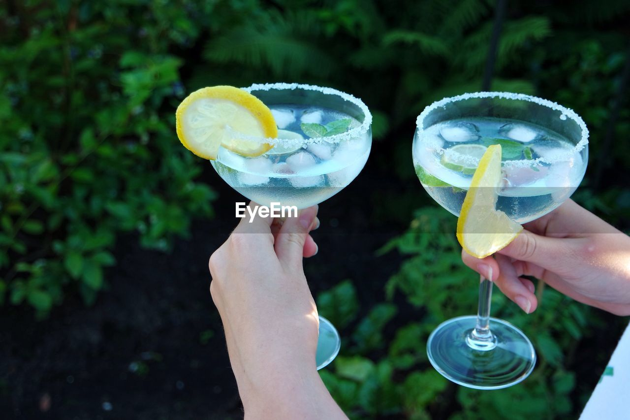 Cropped Image Of Hands Holding Cocktails Against Plants