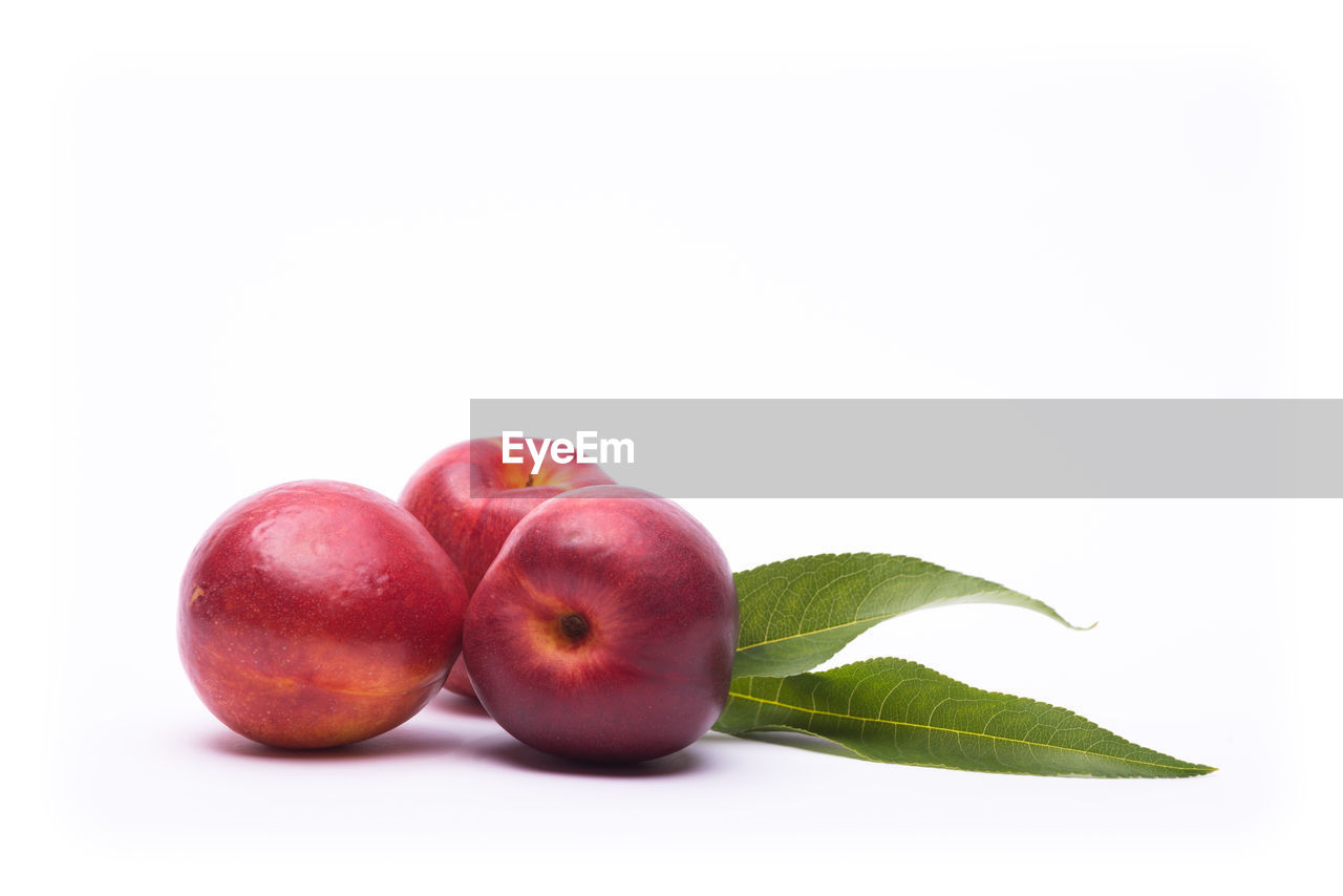 Close-up of red apple on white background