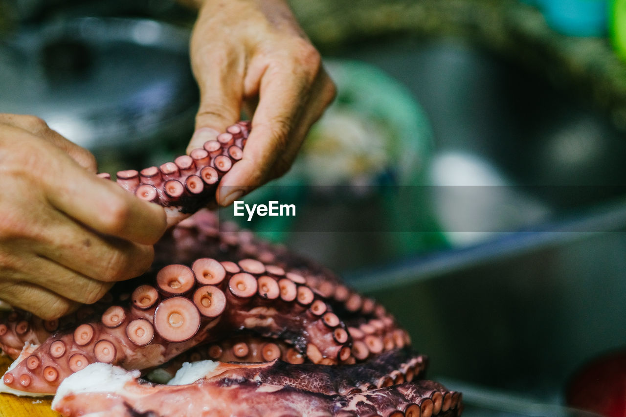 human hand, hand, human body part, real people, one person, close-up, food, food and drink, body part, focus on foreground, holding, day, freshness, selective focus, unrecognizable person, seafood, outdoors, finger, marine, starfish