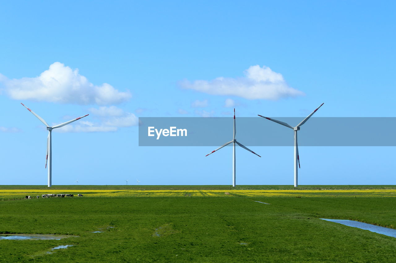 fuel and power generation, environment, wind turbine, environmental conservation, turbine, renewable energy, alternative energy, sky, wind power, landscape, field, land, cloud - sky, nature, beauty in nature, grass, blue, day, rural scene, green color, no people, outdoors, sustainable resources
