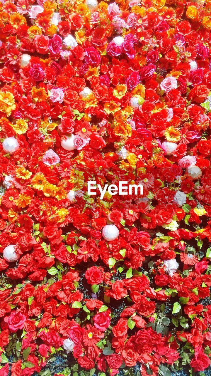 flower, red, fragility, backgrounds, abundance, petal, full frame, nature, beauty in nature, no people, freshness, vibrant color, day, leaf, outdoors, close-up, flower head, flower market
