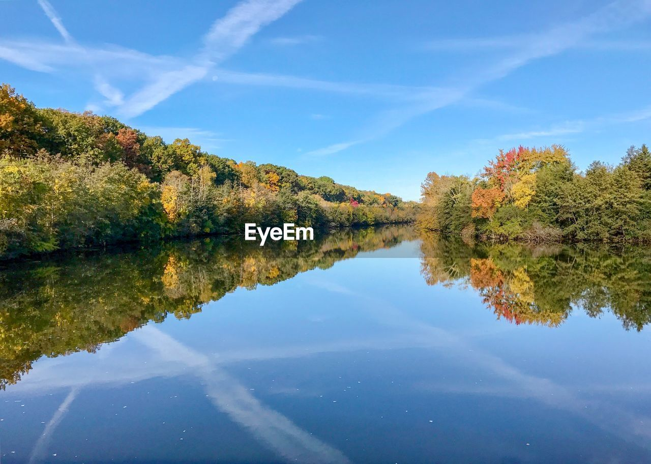 water, plant, reflection, tree, tranquility, beauty in nature, tranquil scene, sky, scenics - nature, nature, lake, waterfront, day, cloud - sky, no people, autumn, non-urban scene, change, growth, outdoors