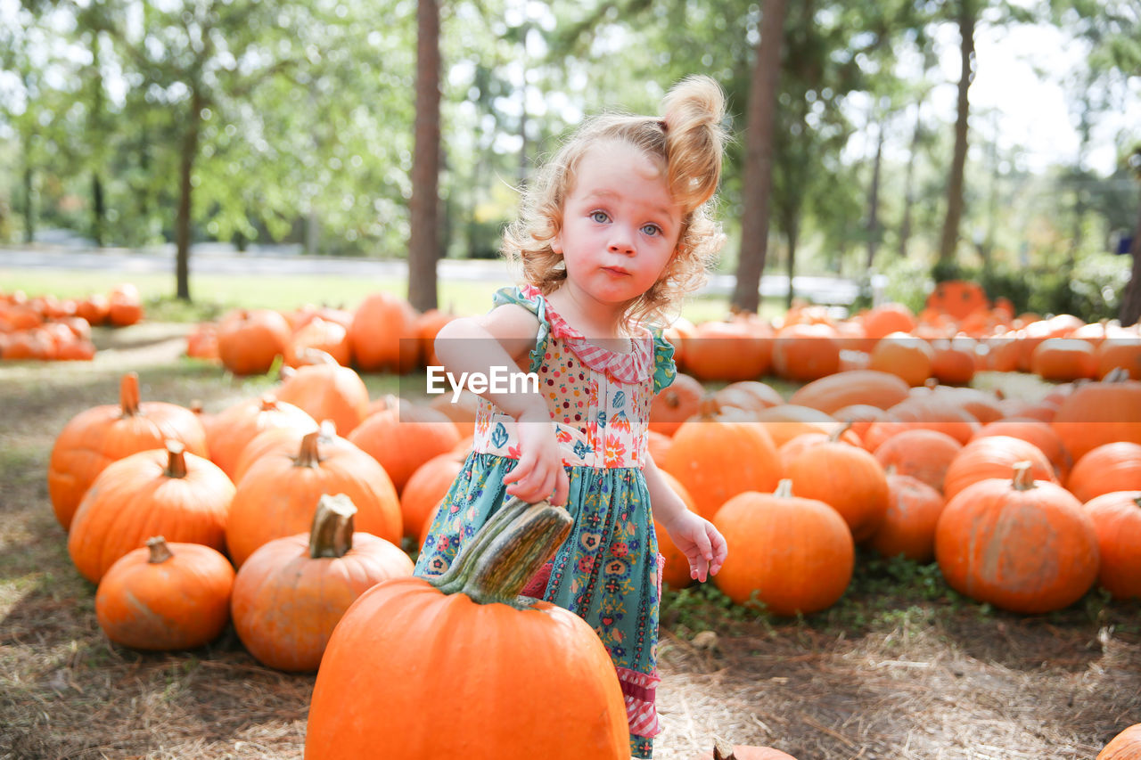 Portrait Of Girl Standing Amidst Pumpkins At Park During Autumn