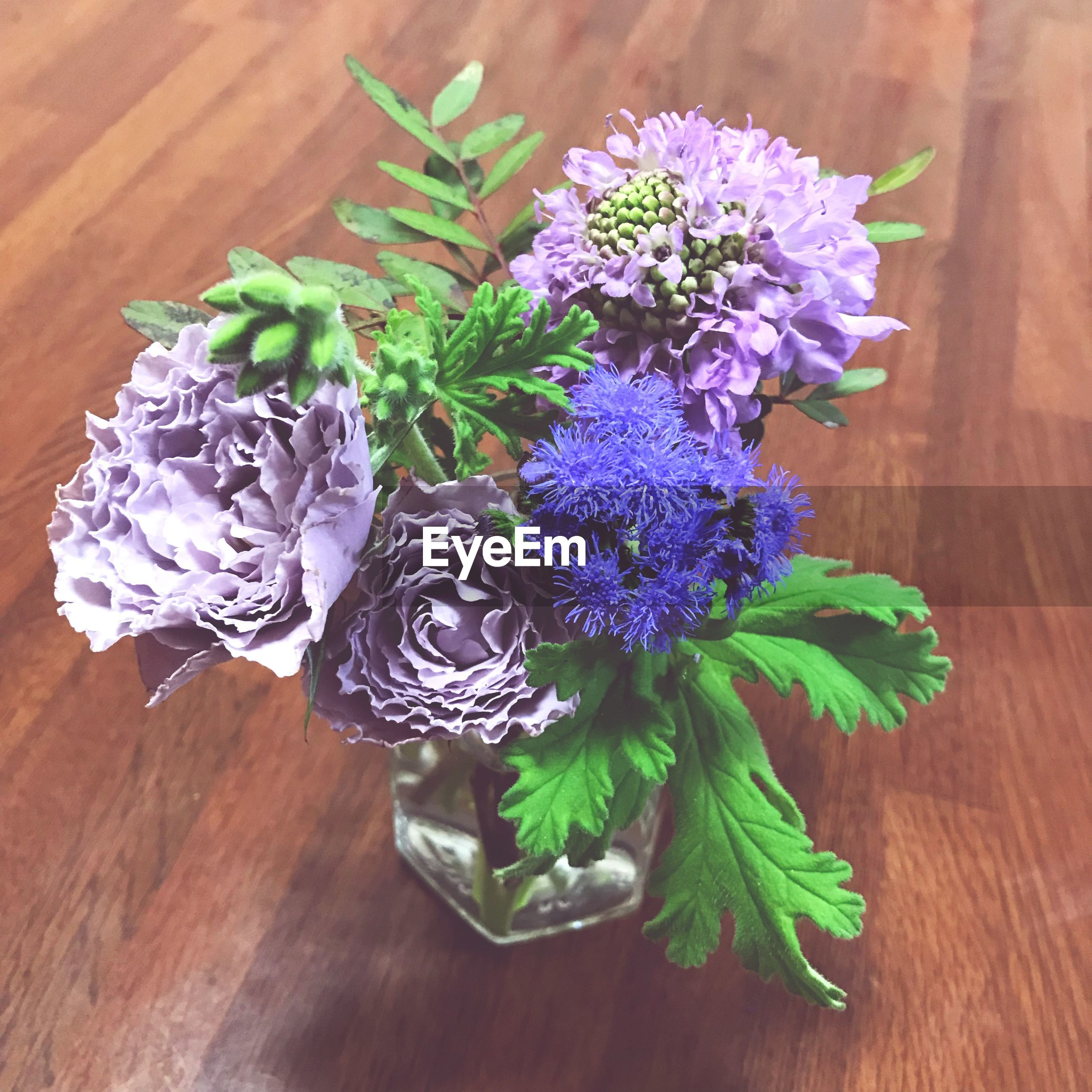 flower, flowering plant, table, freshness, plant, purple, wood - material, close-up, vulnerability, fragility, high angle view, indoors, leaf, nature, beauty in nature, plant part, flower head, no people, inflorescence, green color, flower arrangement, bunch of flowers, bouquet