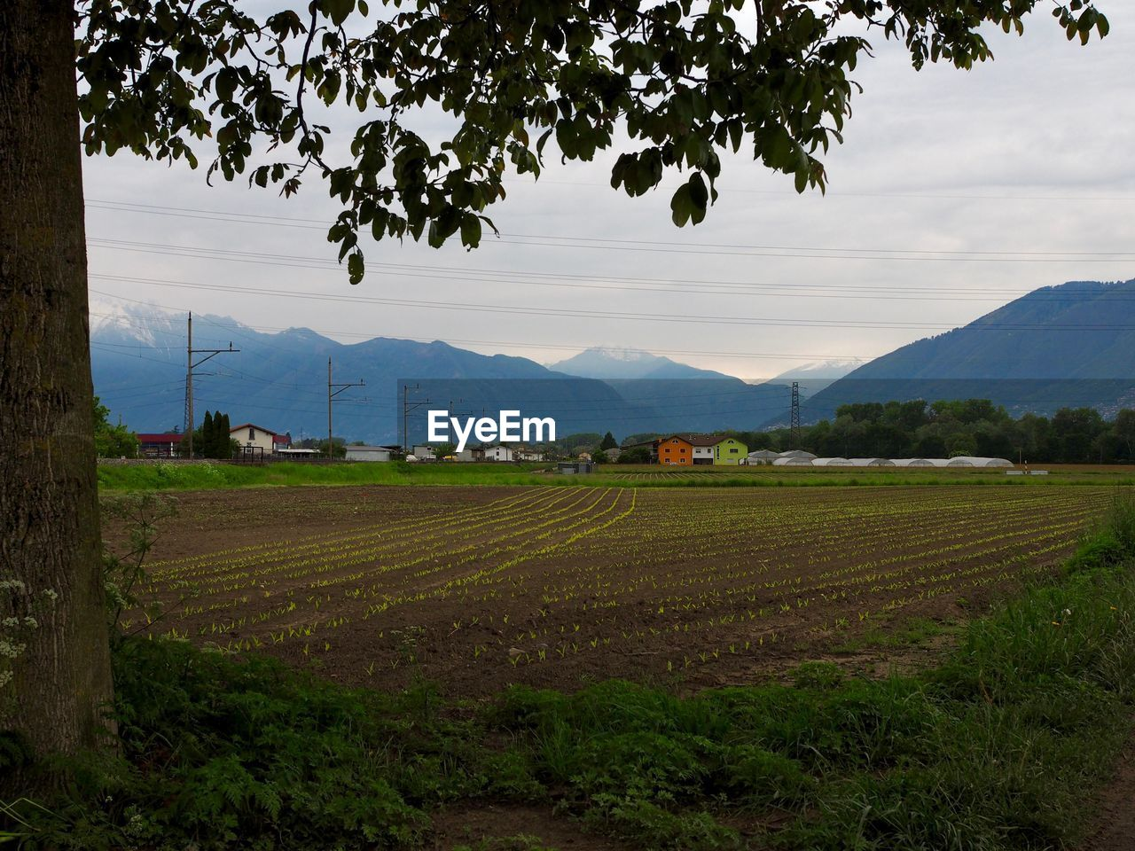 SCENIC VIEW OF FIELD AGAINST MOUNTAIN RANGE