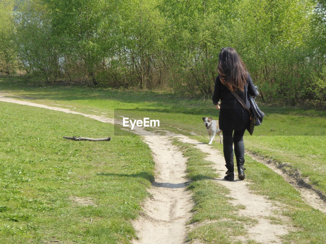 Rear view of woman with dog at park