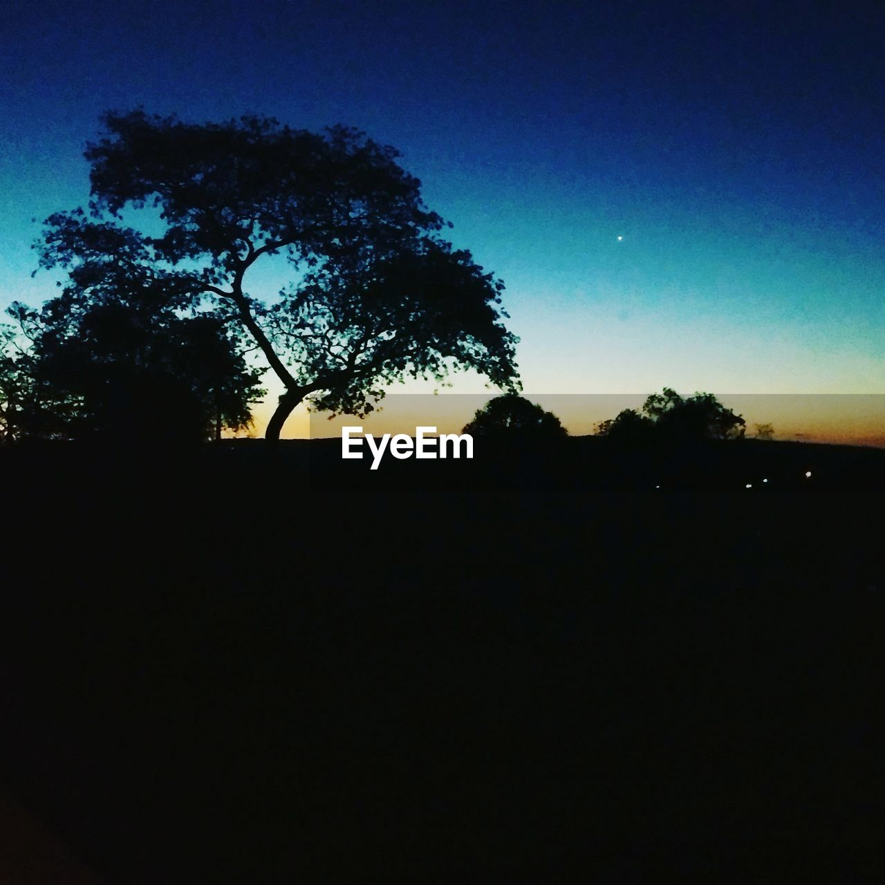 silhouette, tree, dark, sunset, nature, dusk, clear sky, sky, tranquil scene, no people, tranquility, scenics, moon, beauty in nature, outdoors, night