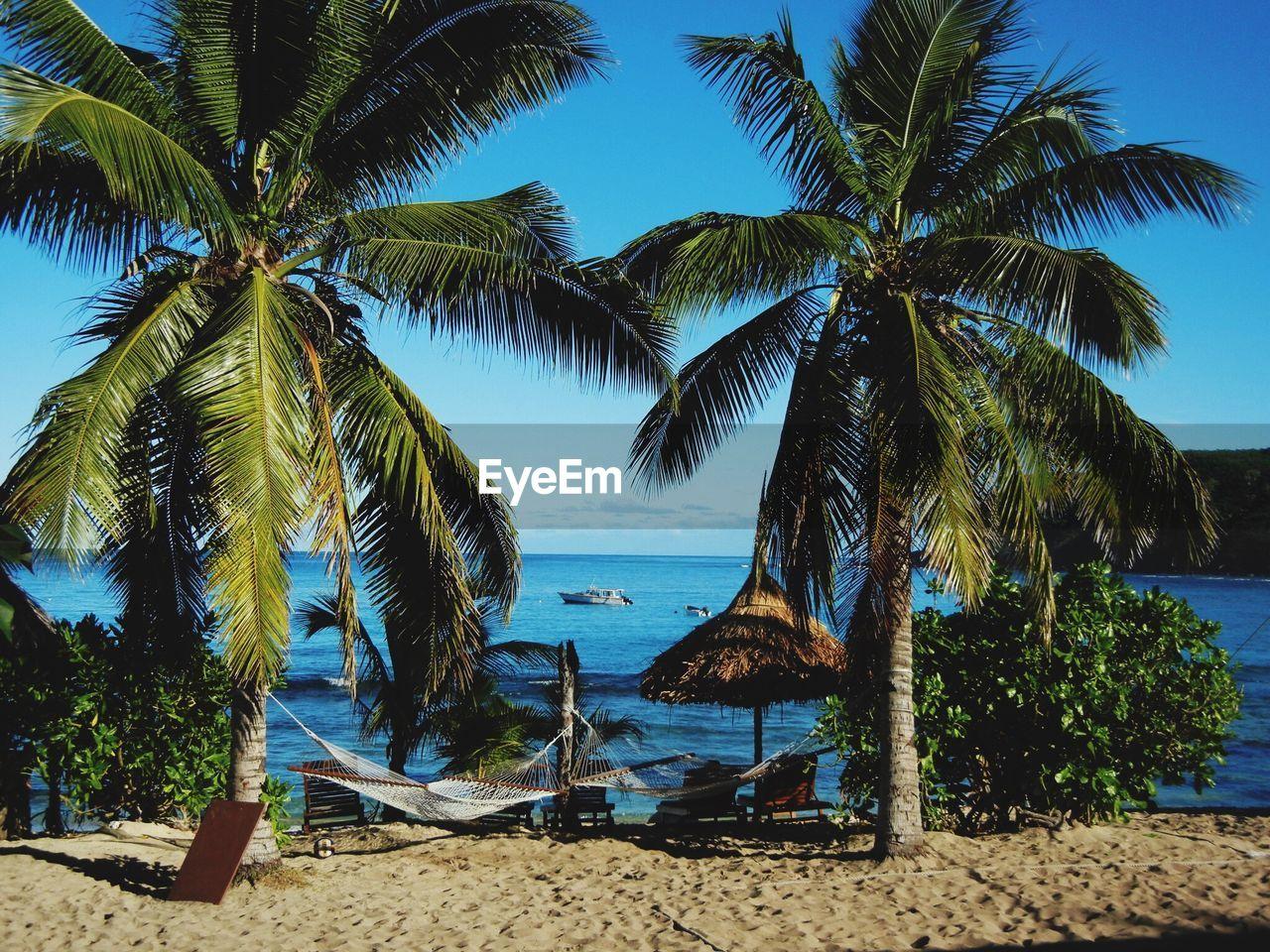 Palm Trees And Hammocks On Beach Against Blue Sky