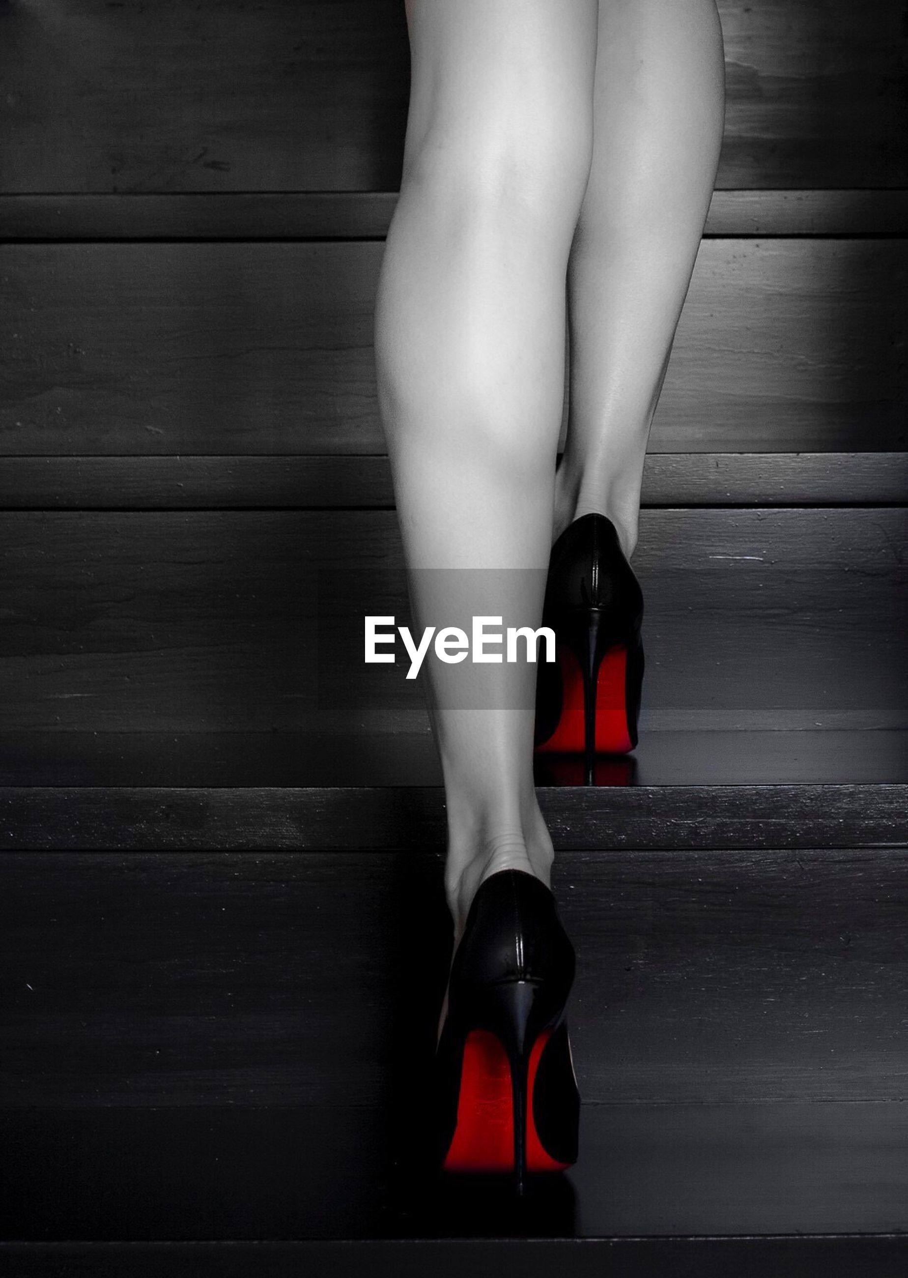 human leg, human body part, low section, high heels, fashion, women, one person, one woman only, adult, close-up, people, adults only