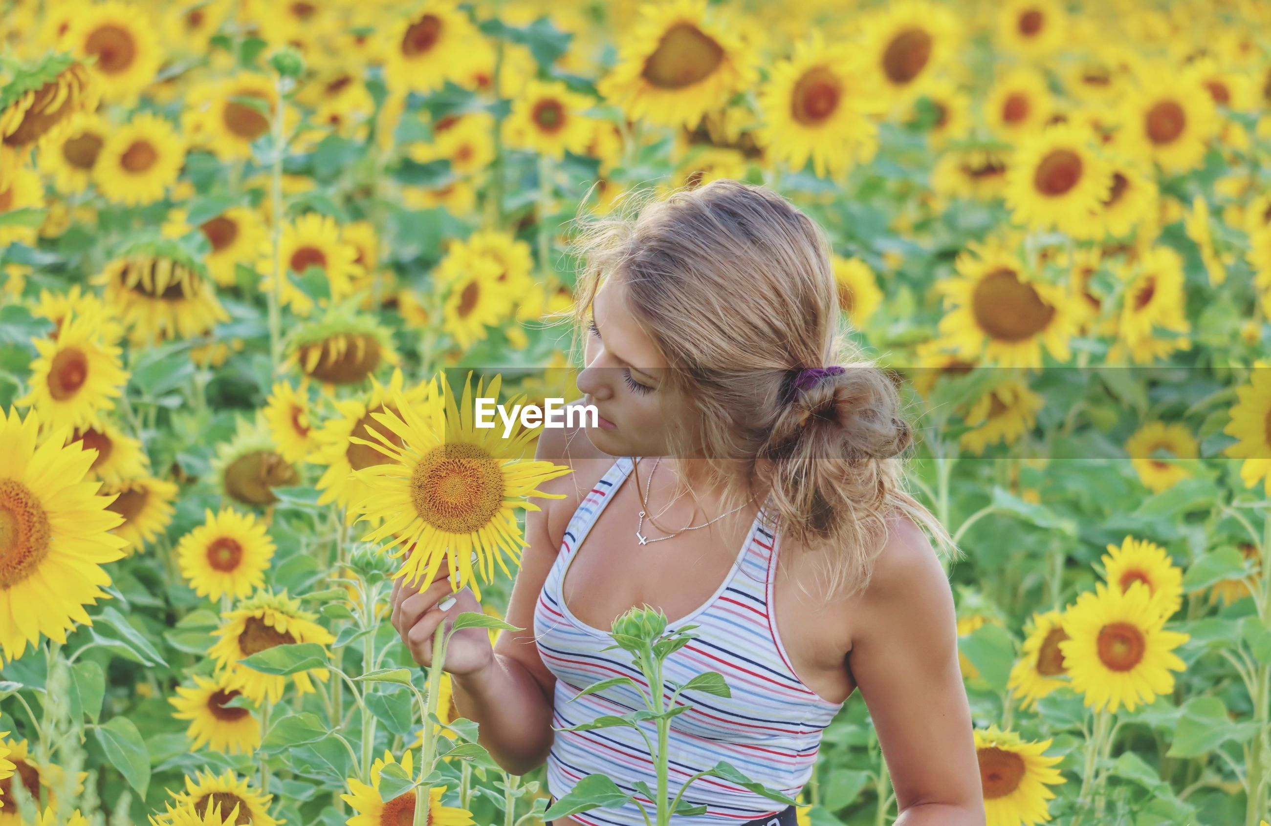 Rear view of woman against yellow sunflower on field