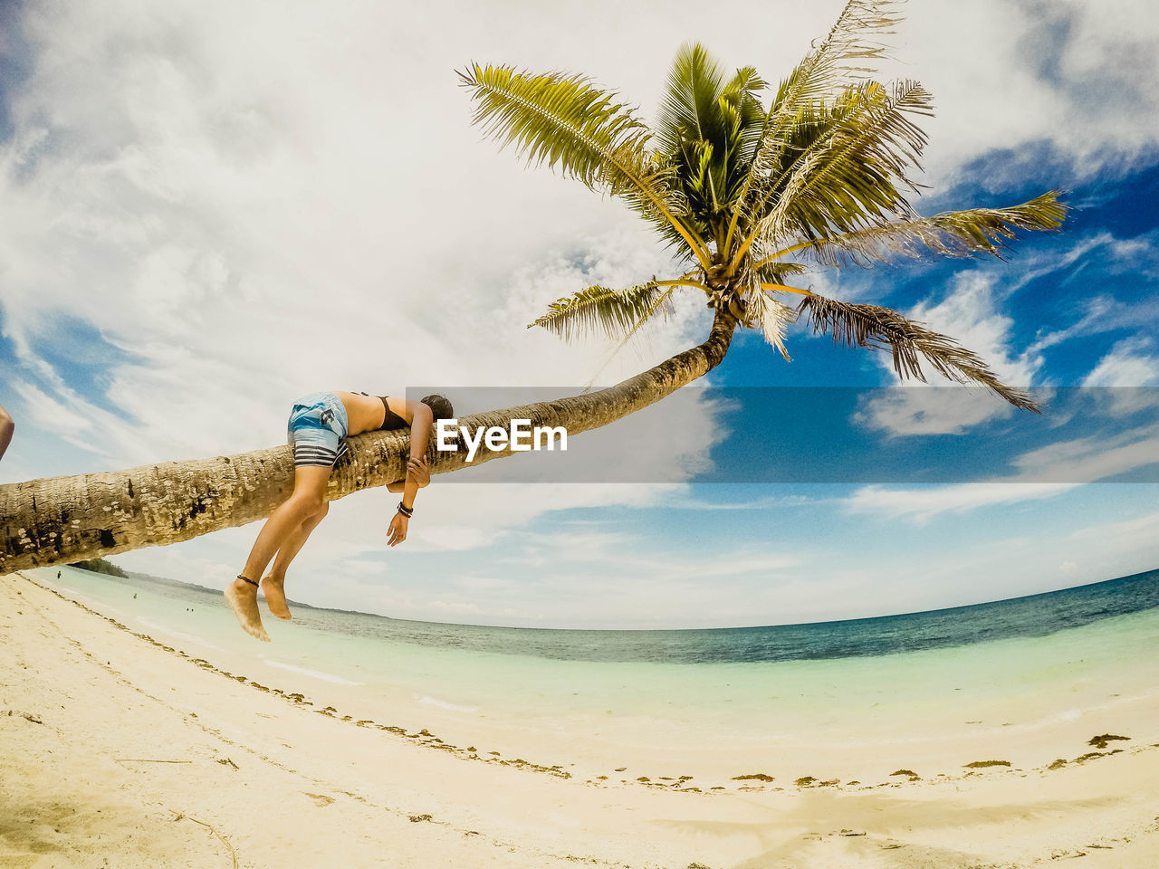 one person, sky, land, beach, leisure activity, palm tree, lifestyles, cloud - sky, tropical climate, nature, real people, full length, young adult, tree, beauty in nature, young women, bikini, adult, sand, outdoors