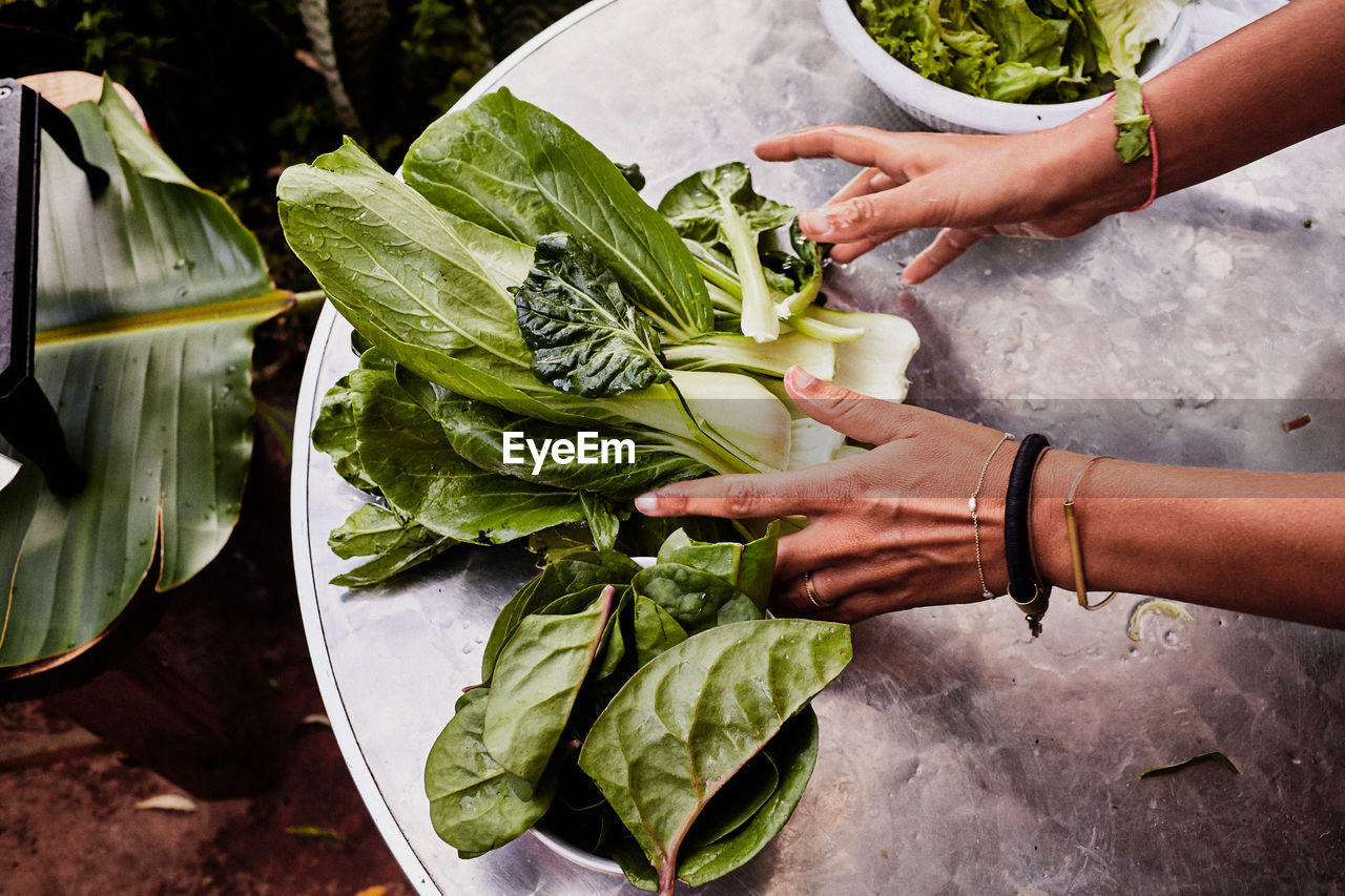 Cropped Hands Of Woman With Leaf Vegetables On Table