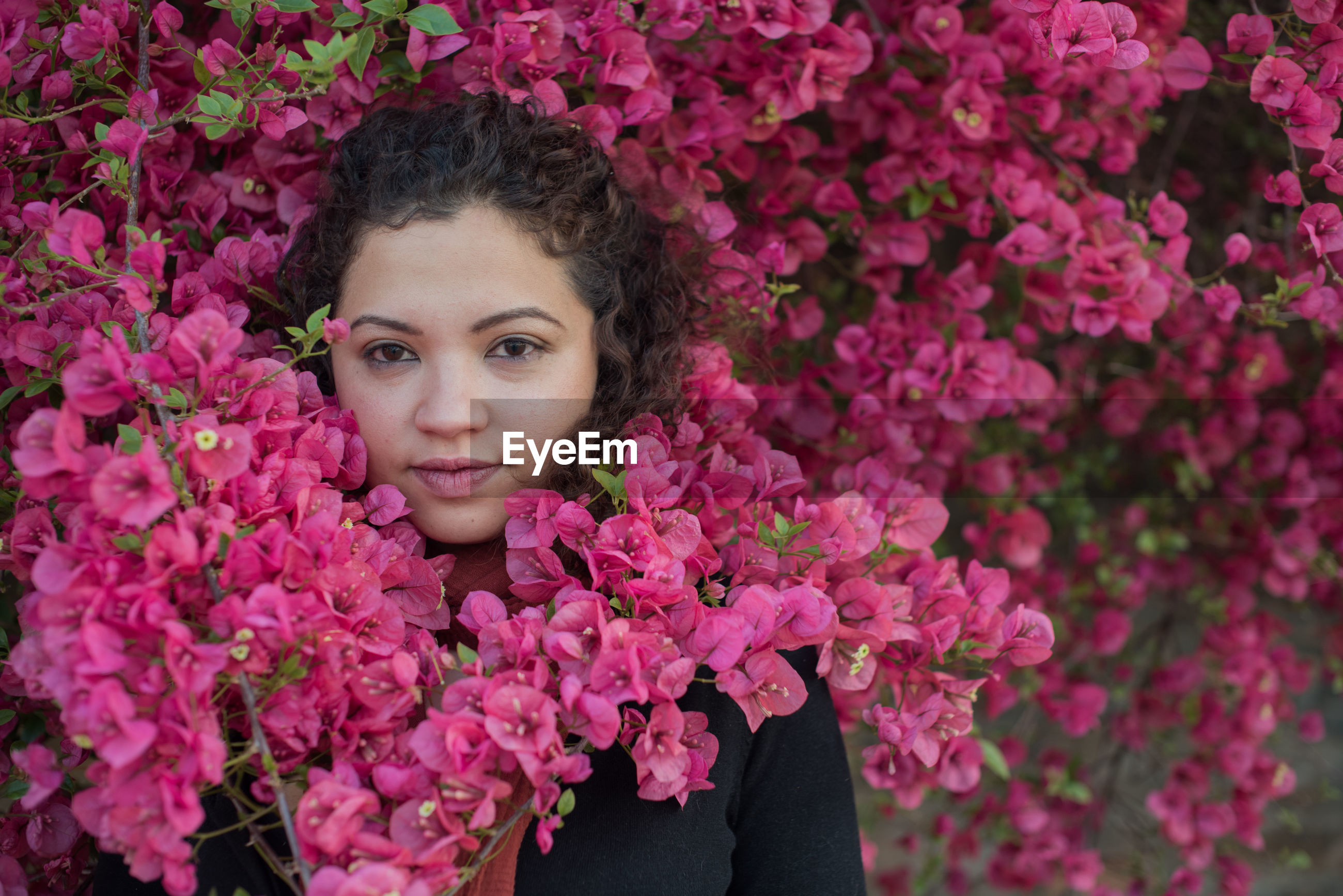 Portrait of young woman standing amidst pink flowers