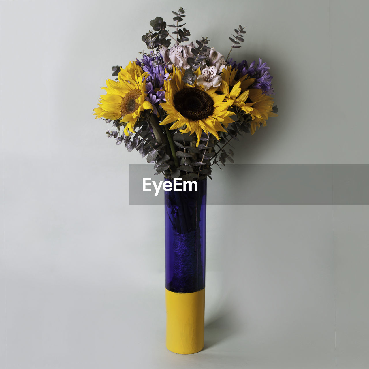 flower, flowering plant, yellow, flower head, plant, vulnerability, freshness, studio shot, fragility, close-up, purple, indoors, inflorescence, vase, no people, petal, beauty in nature, nature, still life, white background, flower arrangement, bunch of flowers