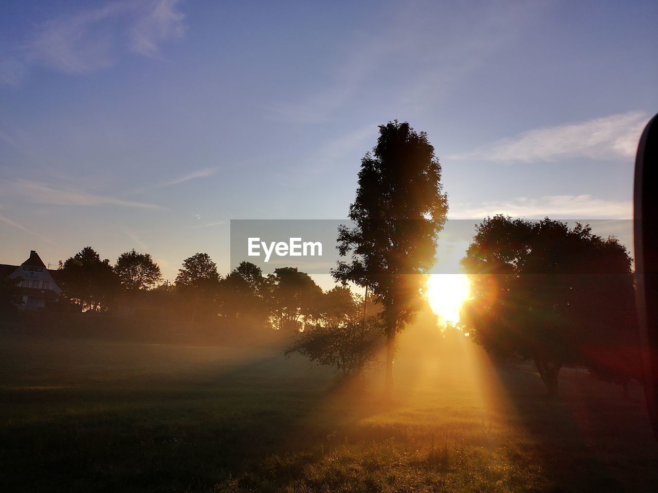 sky, tree, plant, sunset, beauty in nature, tranquility, sunlight, tranquil scene, scenics - nature, nature, sunbeam, cloud - sky, sun, field, silhouette, lens flare, non-urban scene, land, idyllic, growth, no people, outdoors, streaming