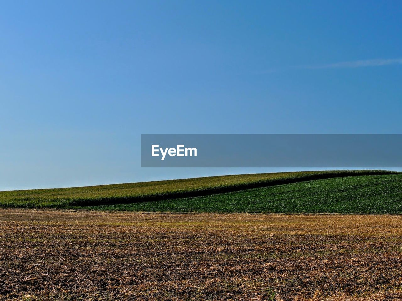 field, nature, agriculture, landscape, clear sky, beauty in nature, tranquil scene, tranquility, scenics, no people, day, rural scene, blue, outdoors, plough, growth, sky, tree, plowed field