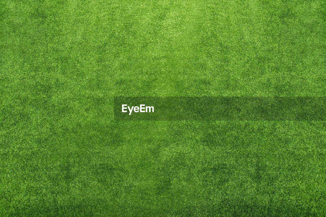 green color, backgrounds, grass, textured, blank, lawn, sport, full frame, plant, copy space, empty, textured effect, no people, pattern, nature, directly above, environment, playing field, american football field, clean, green background, brightly lit, abstract, bright