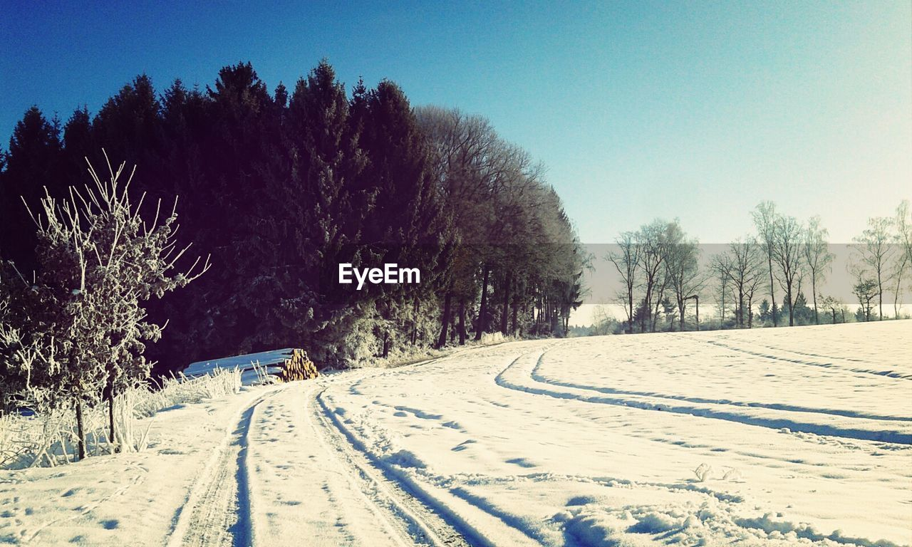 snow, cold temperature, winter, tree, weather, nature, beauty in nature, transportation, landscape, outdoors, no people, day, the way forward, scenics, tranquility, tranquil scene, road, tire track, clear sky, bare tree, sky
