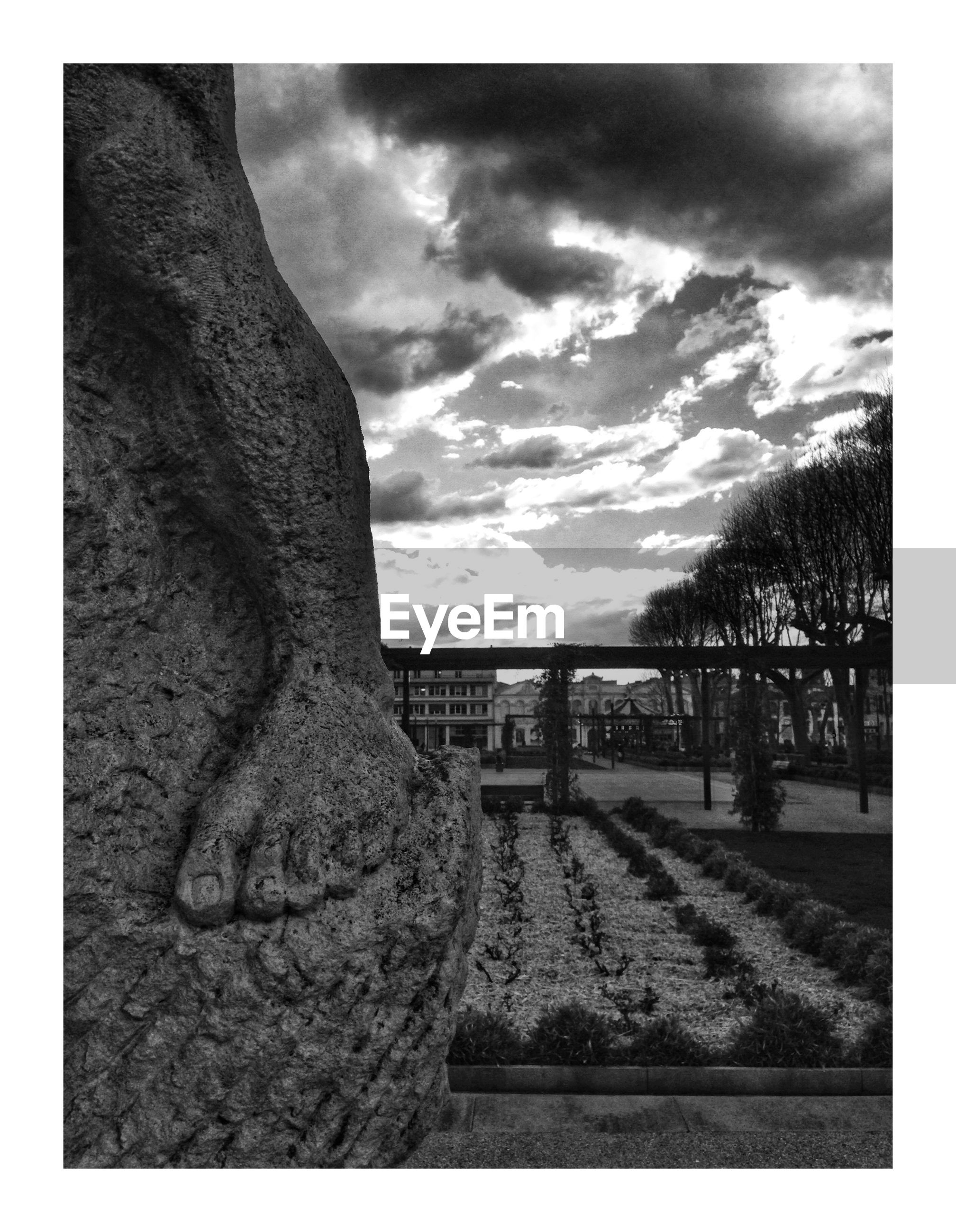 tree, transfer print, sky, auto post production filter, cloud - sky, plant, architecture, nature, no people, sculpture, art and craft, built structure, tree trunk, trunk, statue, history, outdoors, representation, grave, cemetery