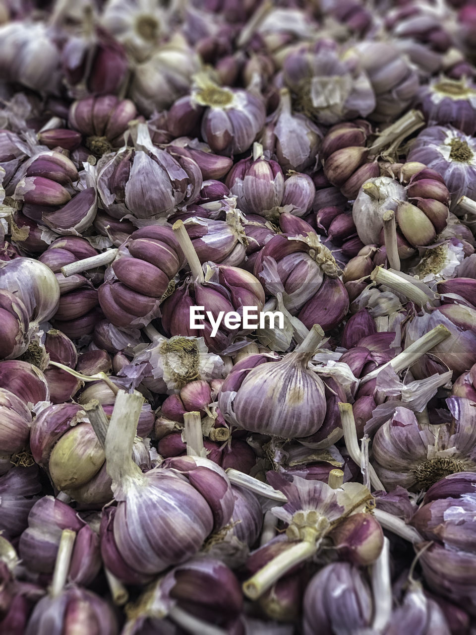 food and drink, freshness, food, vegetable, market, wellbeing, healthy eating, backgrounds, full frame, for sale, abundance, large group of objects, retail, no people, ingredient, raw food, close-up, market stall, purple, spice, retail display, garlic clove