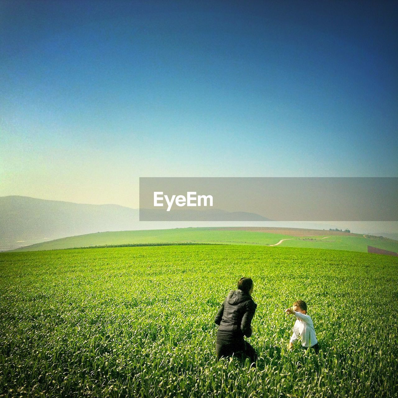 field, agriculture, two people, copy space, real people, farm, crop, men, togetherness, women, clear sky, landscape, rear view, rural scene, nature, grass, scenics, growth, outdoors, love, day, lifestyles, farmer, sky, beauty in nature, adult, people