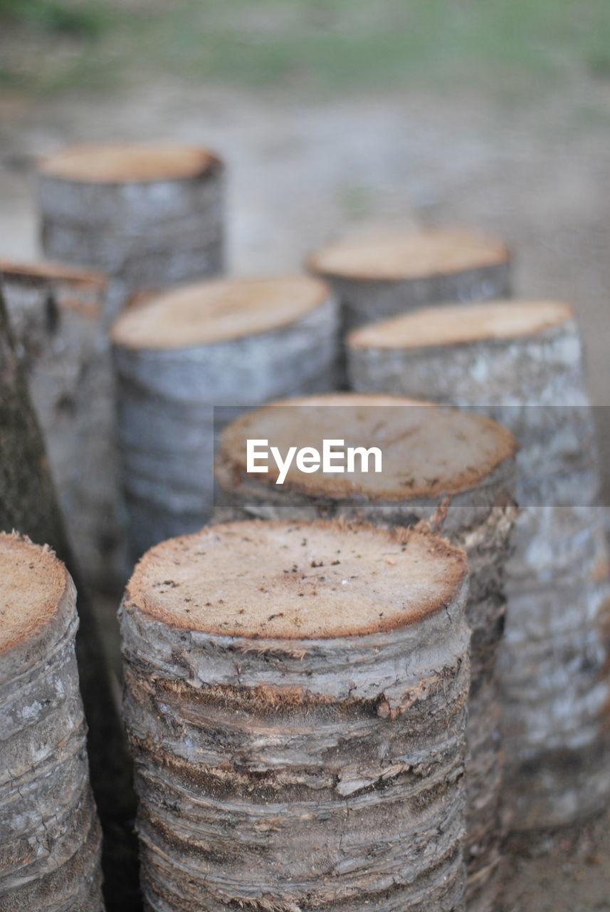 Close-up of timber outdoors