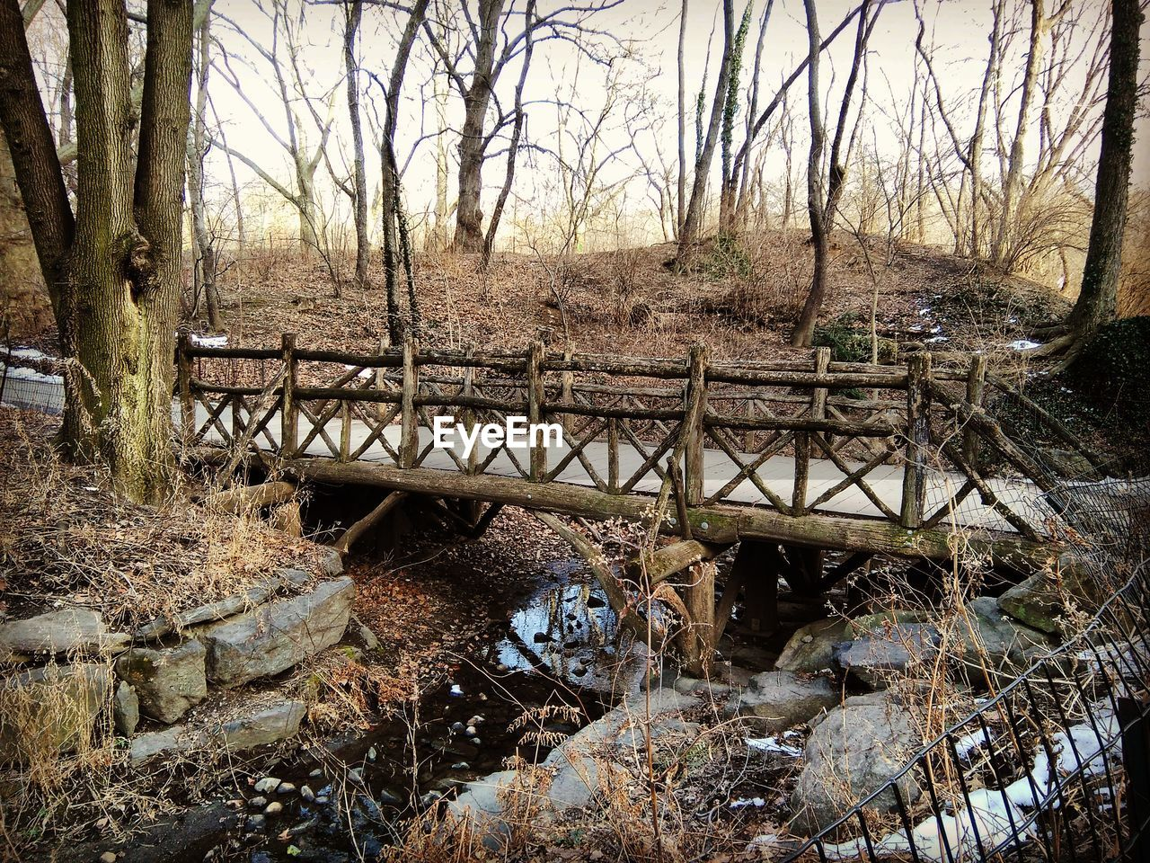 bare tree, tree, day, no people, nature, outdoors, bridge - man made structure, water, branch, architecture, desolate