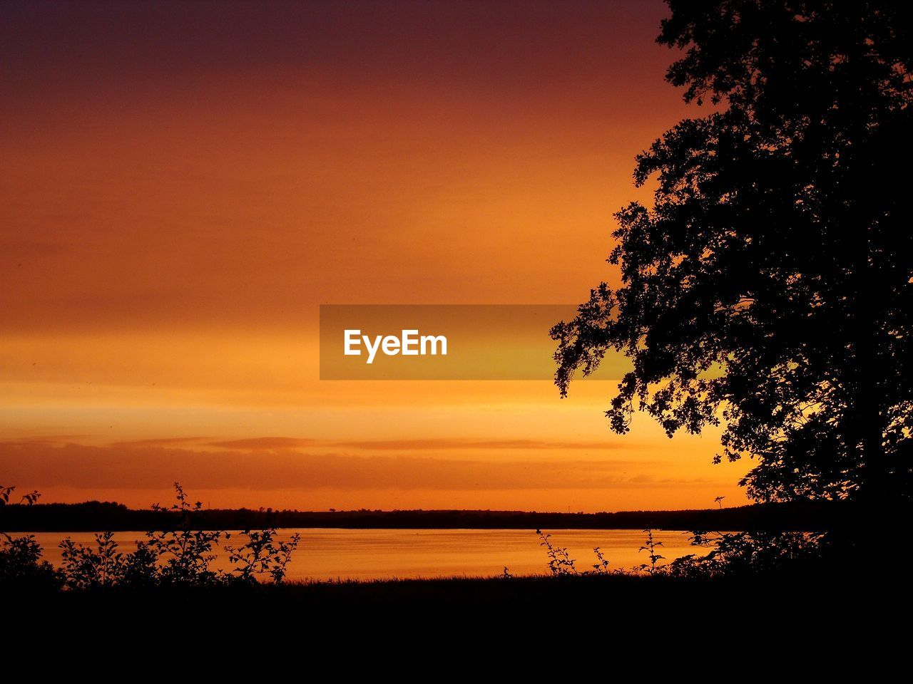 sunset, sky, beauty in nature, scenics - nature, tranquility, silhouette, orange color, tranquil scene, tree, plant, idyllic, water, nature, non-urban scene, no people, lake, cloud - sky, outdoors, dramatic sky, romantic sky