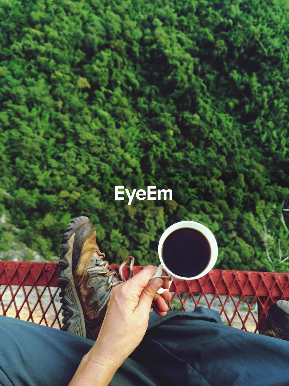 Low Section Of Man Holding Coffee Cup While Sitting Over Trees